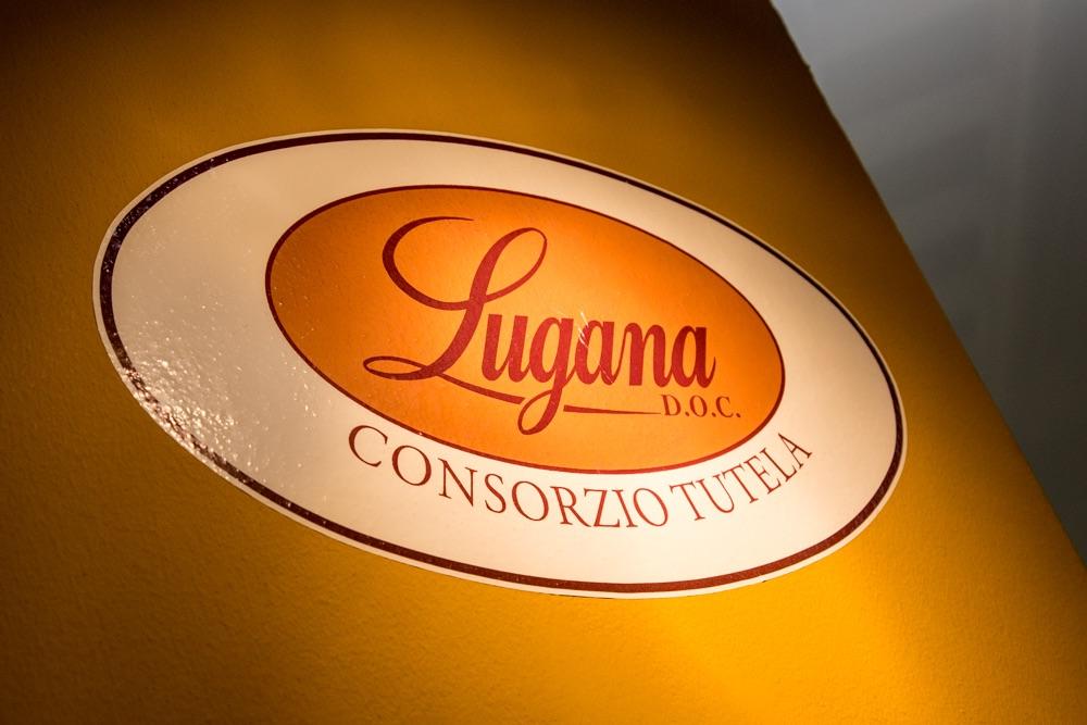 Il miracolo del Lugana: là dove c'era una palude oggi nasce un gran vino