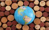 Le verità nascoste nei numeri del vino: il complotto cinese, il boom del Cognac e il primato del Veneto