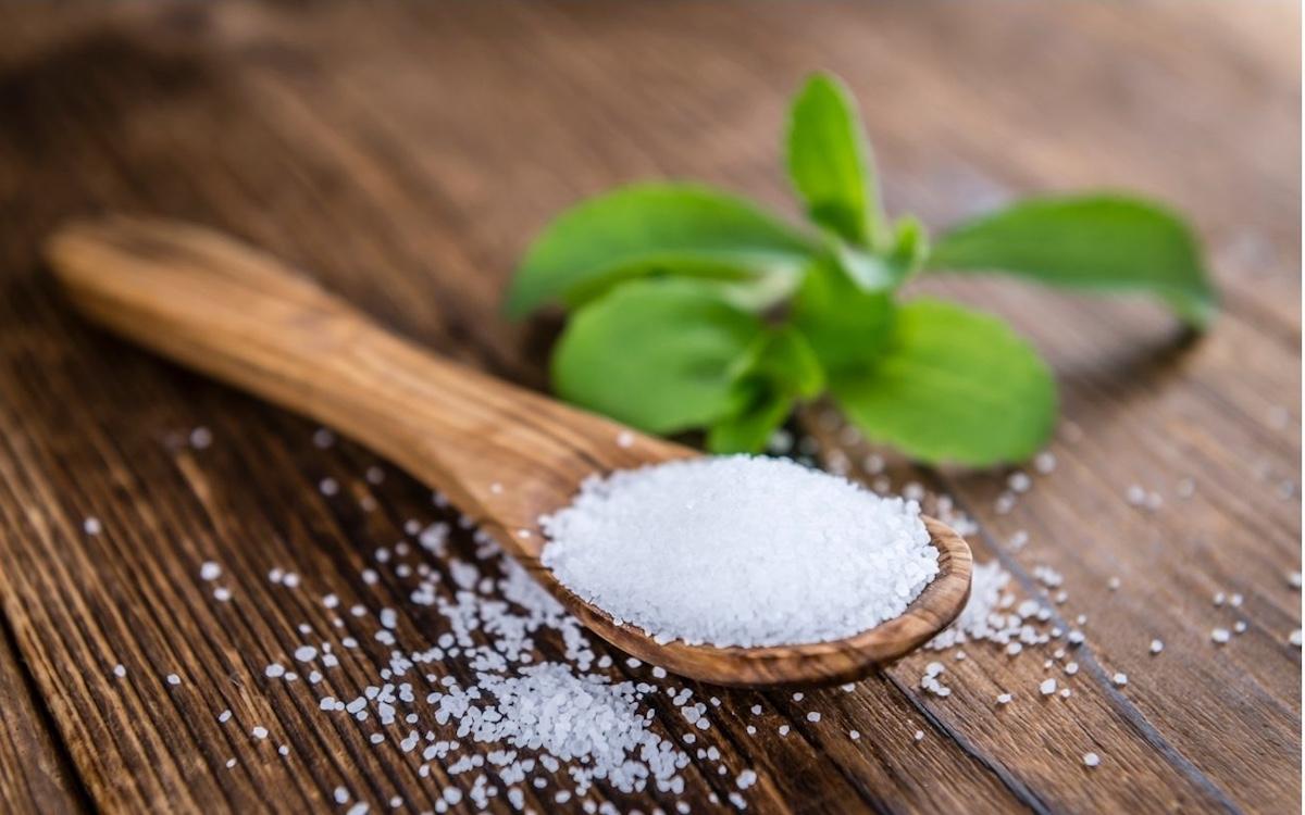 Come coltivare la Stevia rebaudiana
