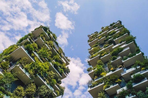 Il genio dell'edilizia che costruisce grattacieli senza usare l'acqua